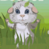 Cute Cavy Dress Up